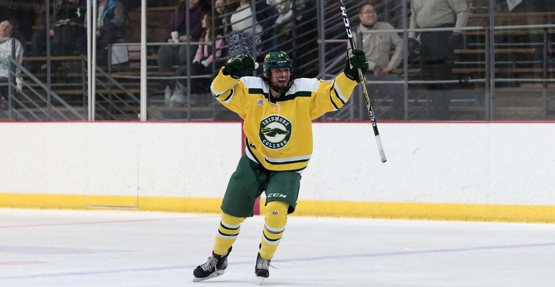 Кто такой нападающий в хоккее